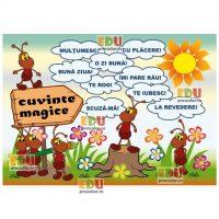 cuvinte magice grupa furnicutelor