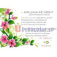 diploma de ziua mamei - dzm05