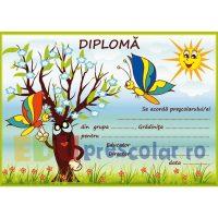 diploma cu fluturi si mar inflorit - dpa24