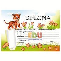 diploma grupa tigrisorilor