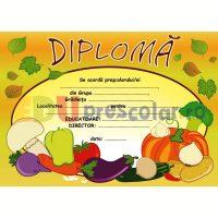diploma cu legume - dtp05