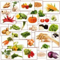 planse cu legume