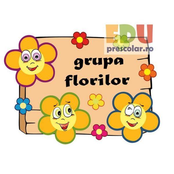 placuta usa grupa florilor
