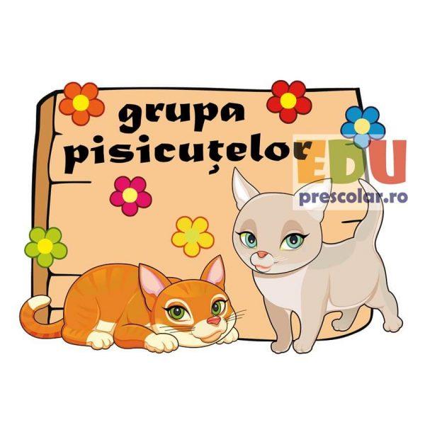 placuta grupa pisicutelor